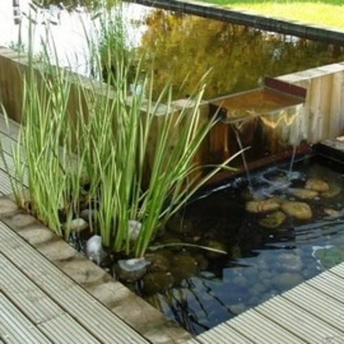 bassin avec lame d''eau