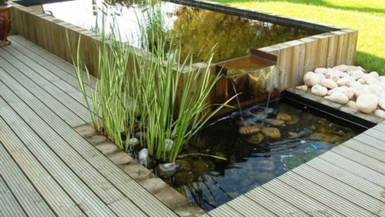 bassin avec lame d''eau 0
